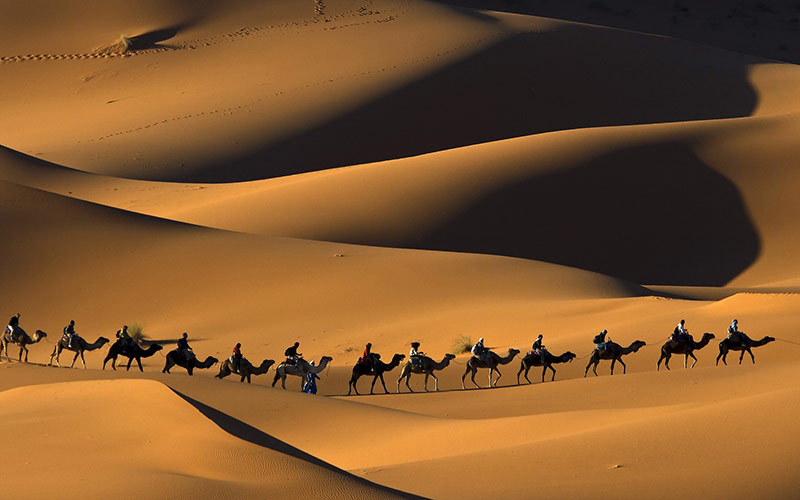 travels-africa-sahara