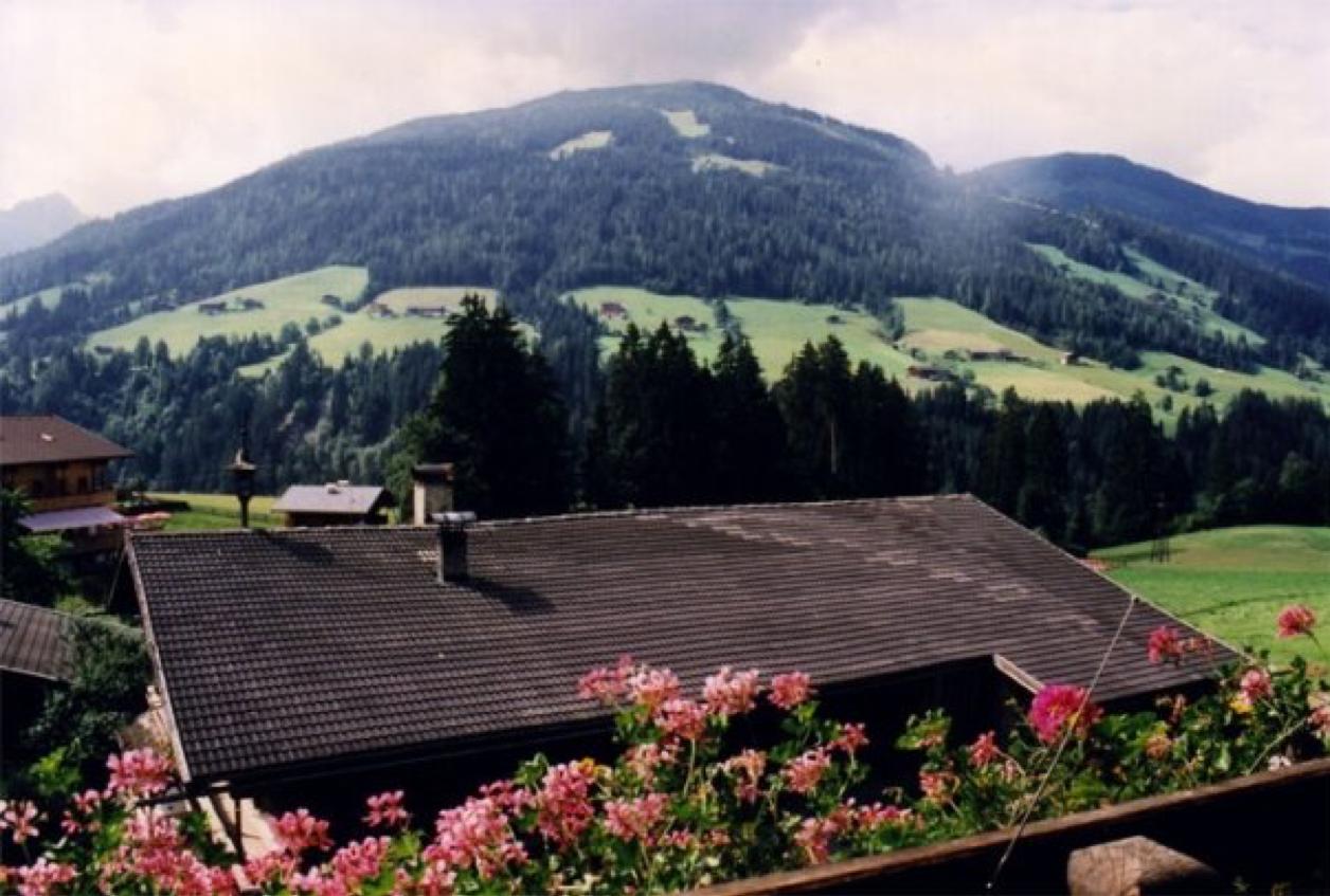 alpbach-mountain-scapes-by-sasha-shulgin