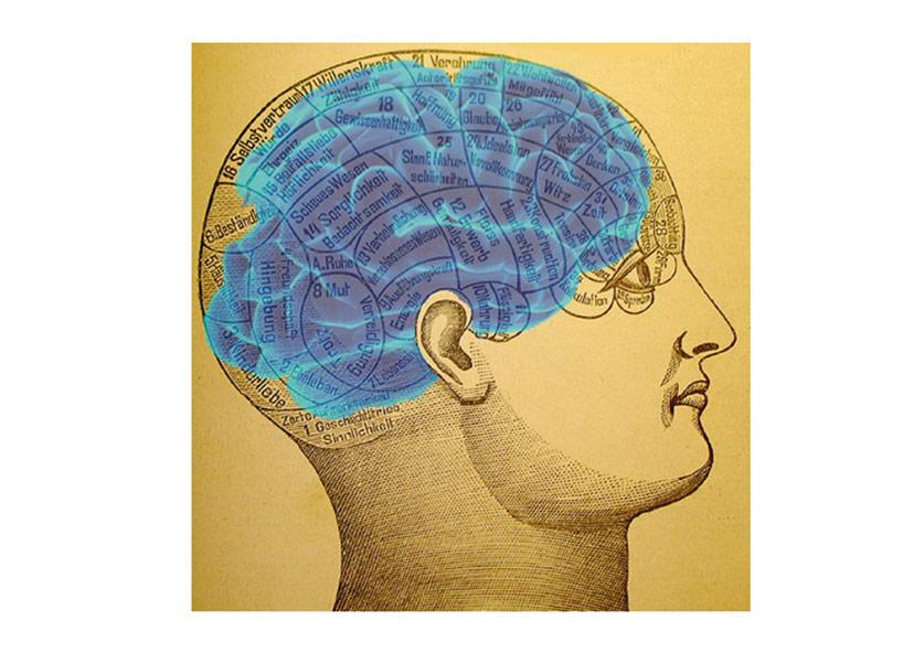 wij-zijn-meer-dan-ons-brein